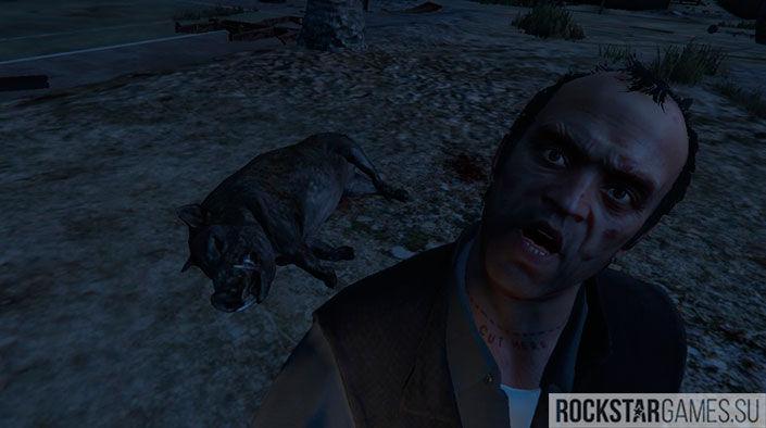 Убийство животных GTA