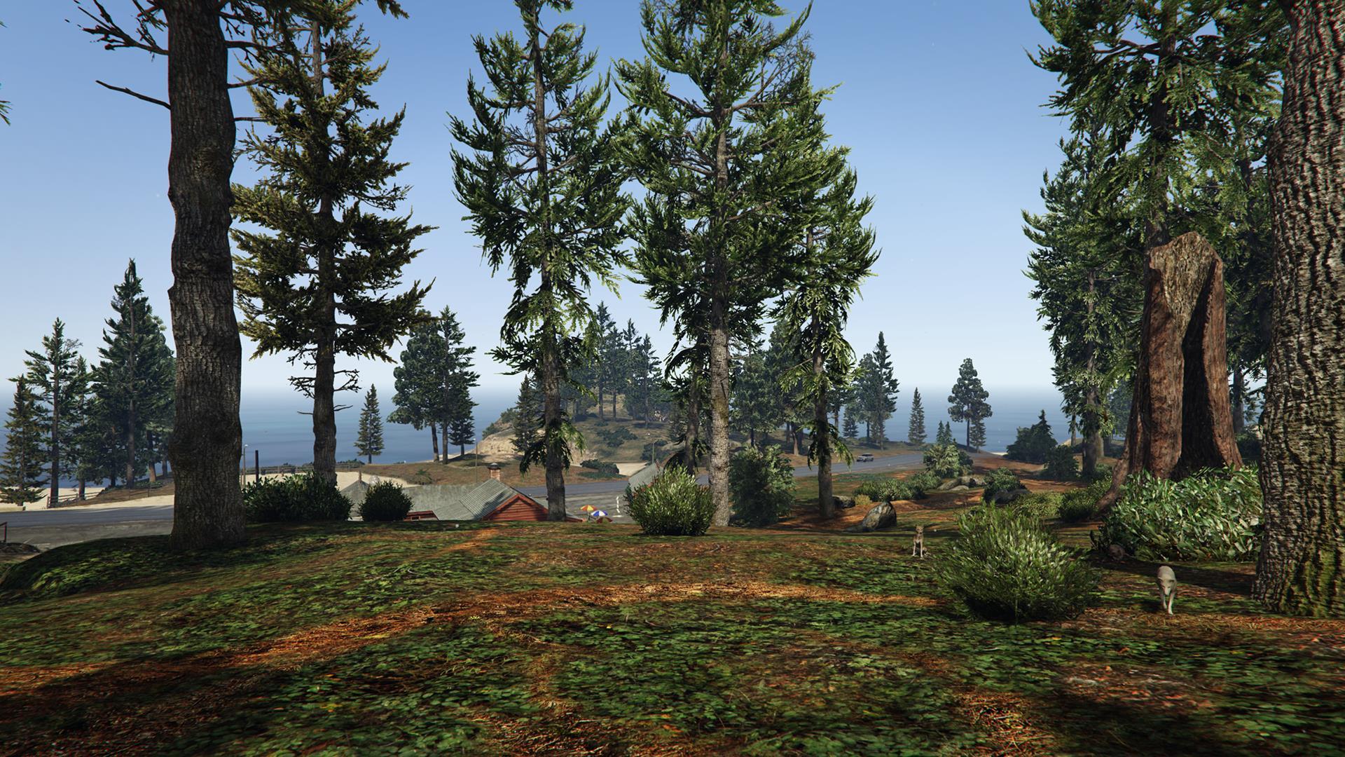 Качество травы GTA 5