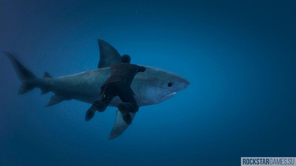 Охота на акул в GTA 5