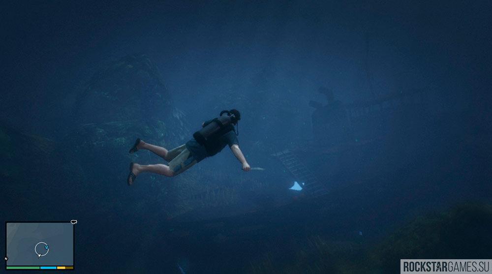 В воде на вас может напасть акула