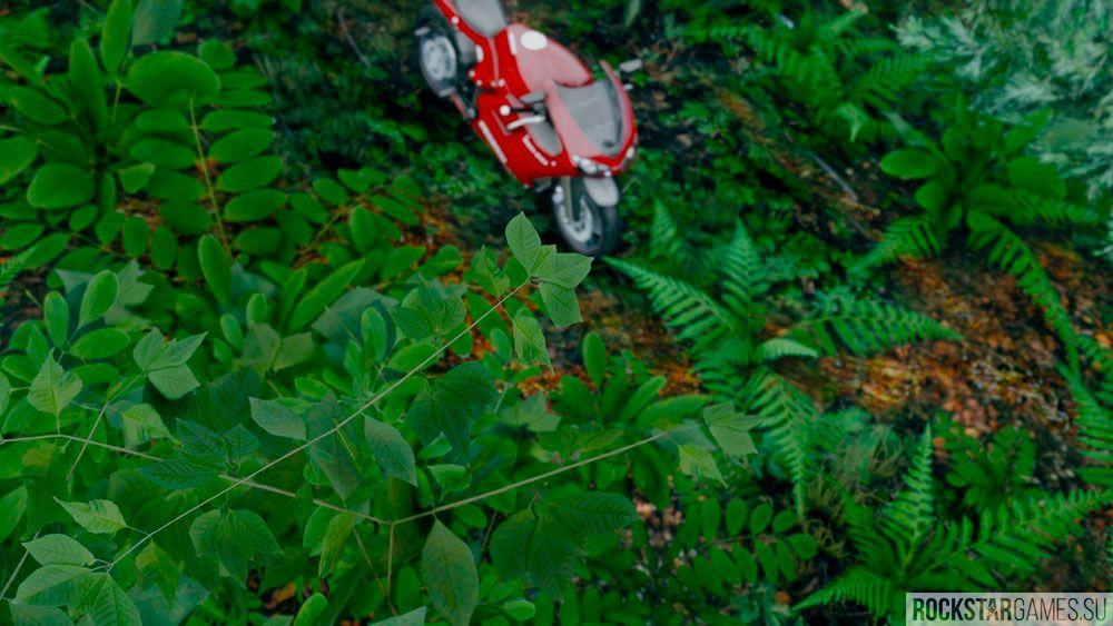 Растения в GTA 5 с установленным модом The Pinnacle of V